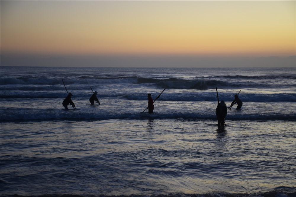 Ngư dân Quảng Ngãi khuấy lòng biển cào những con ốc gạo đủ màu sắc - Hình 2