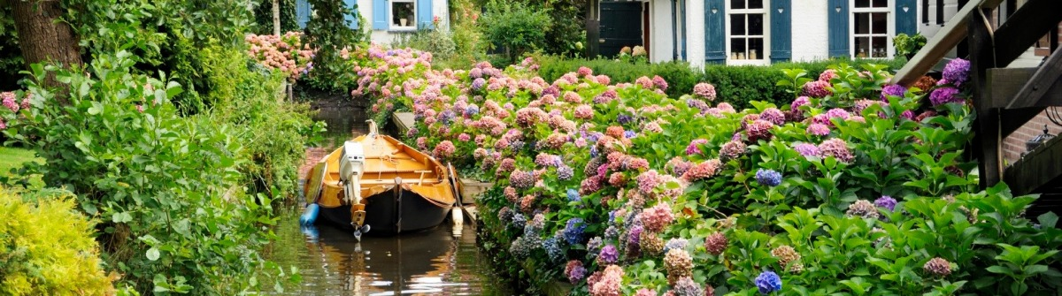 Giethoorn - ngôi làng nổi hay phiên bản cổ tích của Amsterdam - Hình 1