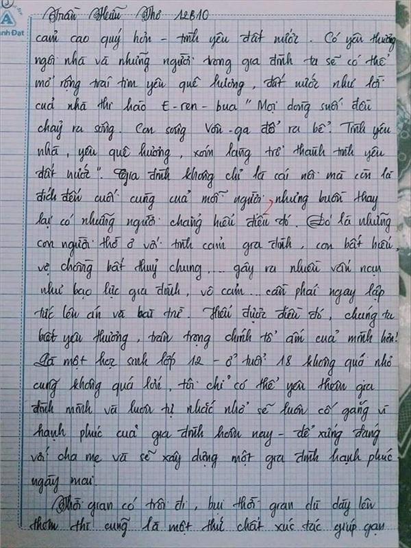 Bài văn 9.5 điểm xuất sắc từ nội dung đến chữ viết, khiến giáo viên bất lực khi viết lời phê - Hình 17