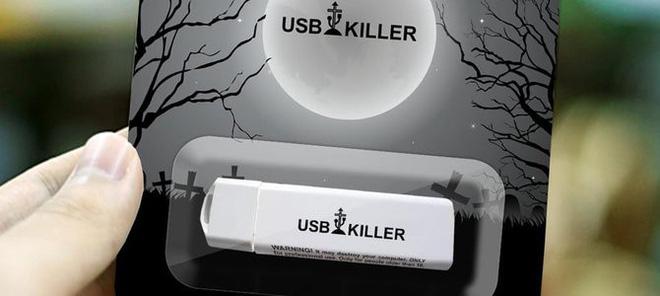 Du học sinh lĩnh án 10 năm tù vì dùng USB sát thủ phá hoại 66 máy tính nhà trường - Hình 1