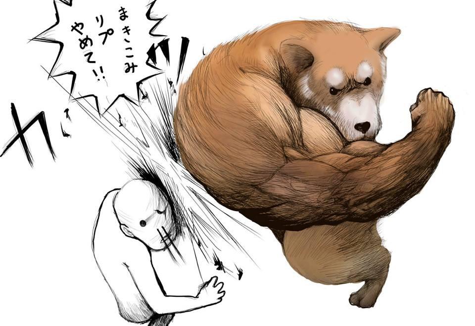 Khoảnh khắc chú chó Shiba quay đầu tung nắm đấm không trượt phát nào như Saitama bất ngờ gây sốt trên MXH - Hình 2