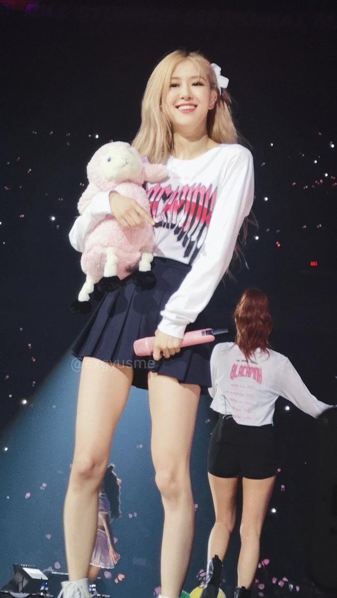 Black Pink lần lượt bật khóc tại concert vì uất ức trước ý kiến chỉ trích gay gắt của công chúng? - Hình 5