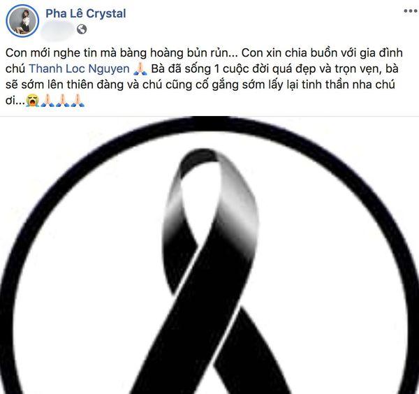 Hồng Đào, Lam Trường cùng các sao Việt bày tỏ thương tiếc khi mẹ NSƯT Thành Lộc - Bạch Long qua đời - Hình 3