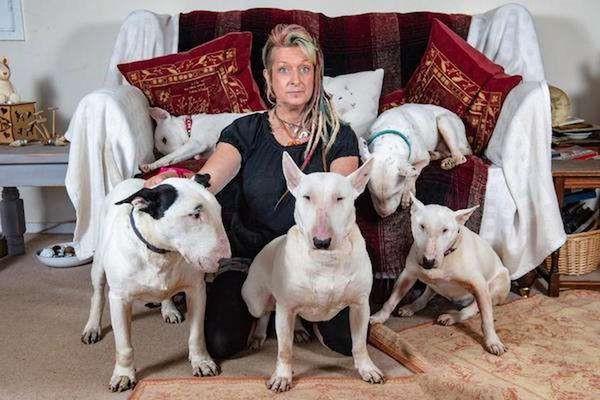 Em chọn anh hay chọn chó? và câu trả lời của người vợ khiến cuộc hôn nhân 25 năm tan thành mây khói - Hình 6