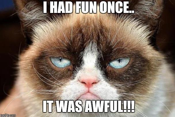 Grumpy Cat - cô mèo cáu kỉnh nhất thế giới với hơn 8 triệu người theo dõi đã qua đời - Hình 3
