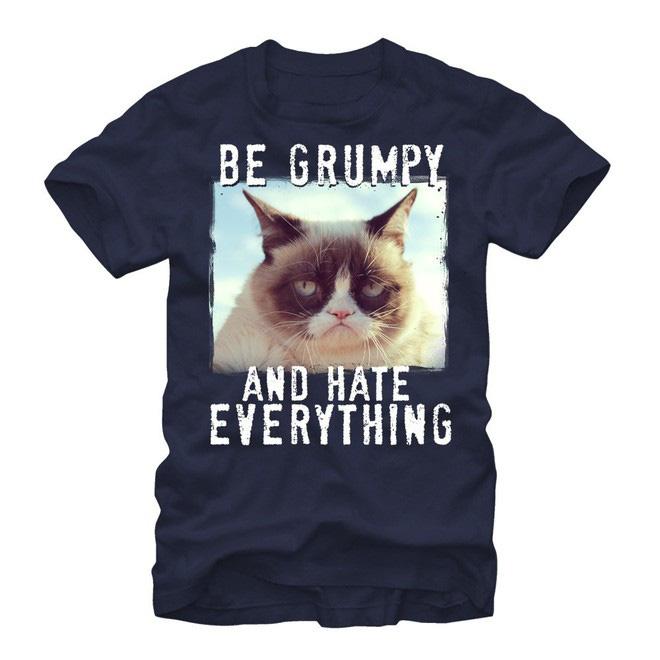 Grumpy Cat - cô mèo cáu kỉnh nhất thế giới với hơn 8 triệu người theo dõi đã qua đời - Hình 9