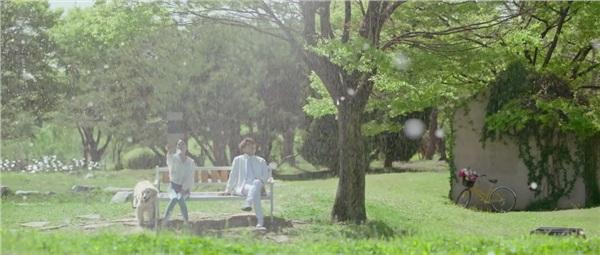 Lần đầu gặp gỡ giữa L và Hye Sun trong Nhiệm vụ cuối cùng của thiên thần không ngờ lại lãng mạn đến thế này - Hình 4