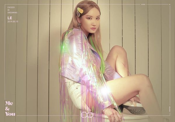 Tôi kể bạn nghe về EXID - Nhóm nhạc nữ chật vật nhất Kpop này... - Hình 8