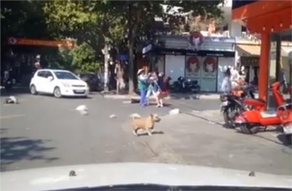 Vứt rác đầy đường bị nhắc nhở, chủ shop quay sang đánh cô lao công túi bụi? - Hình 1