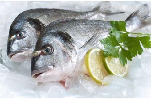 Tuyệt chiêu bảo quản cá tươi rói như vừa câu, không lo bị ươn - Hình 1