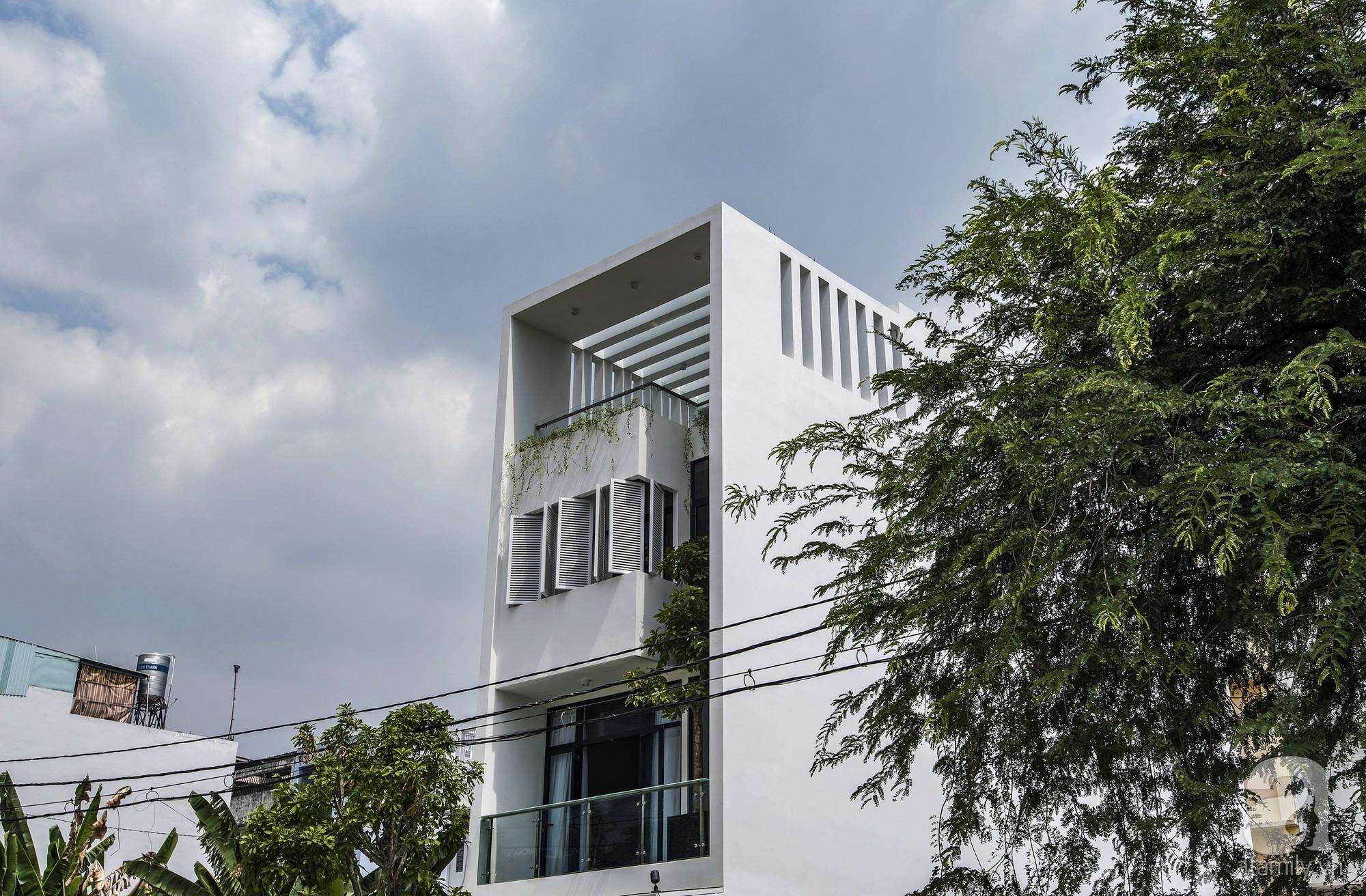 Ngôi nhà ống xanh ngát xanh bất chấp sự chật hẹp giữa phố phường Sài Gòn - Hình 2