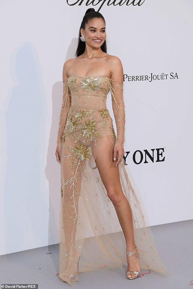 Siêu mẫu Úc Shanina Shaik diện váy hở bạo - Hình 5