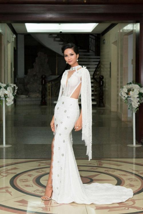 Stylist xin lỗi khi Hhen Niê bị thương hiệu nước ngoài tố mặc váy nhái - Hình 3