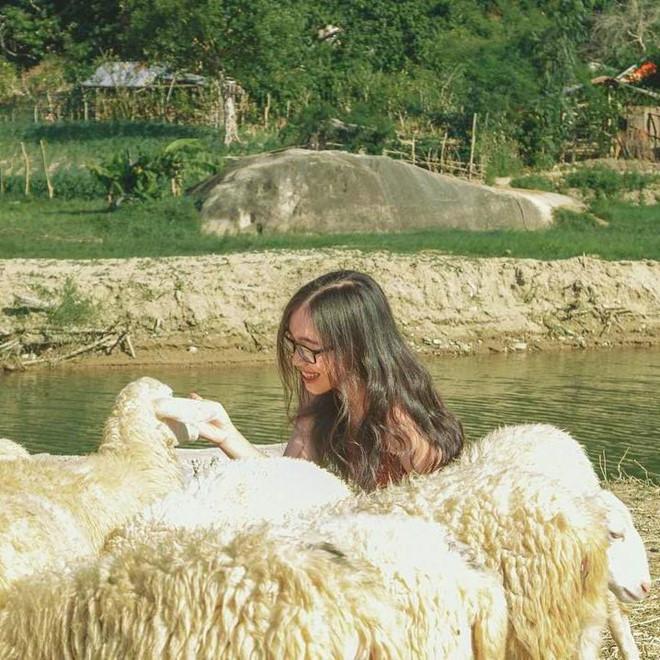 Đến đồng cừu Ninh Thuận để có bộ ảnh trên thảo nguyên độc lạ - Hình 11