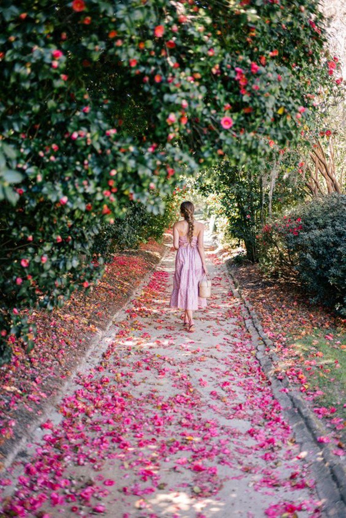 Cuộc sống bình yên, tự tại trong những ngôi nhà ngập tràn nắng gió và hương thơm vạn người mơ ước - Hình 15