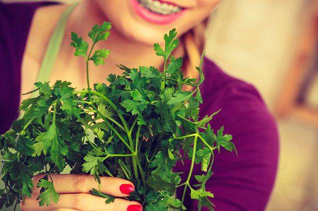 Các loại rau thơm có tác dụng ức chế lão hóa - Hình 1