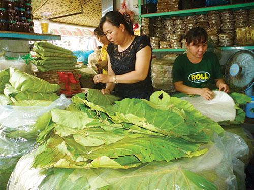 Hồi sinh lá loon-loài cây kỳ lạ thay túi ni lông ở rừng Bình Thuận - Hình 1