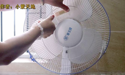 Mẹo đuổi muỗi giúp bạn ngủ không cần mắc màn - Hình 3