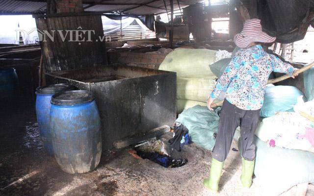 Thâm nhập làng nuôi heo có nguy cơ nhiễm dịch tả cao nhất Sài Gòn - Hình 10