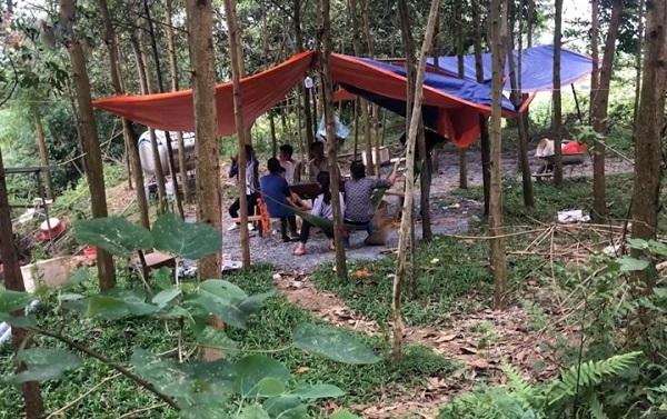 Đáng ngại: Cắm điện săn bắt tận diệt, chế biến giun đất ở Phú Thọ - Hình 1