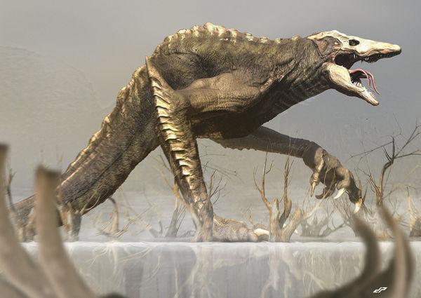 Vì sao Kong không xuất hiện khi nghe tiếng gọi của rồng 3 đầu Ghidorah trong Godzilla: King of the Monsters? - Hình 5
