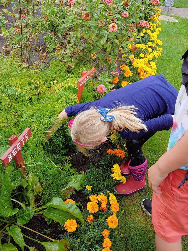Khu vườn quá đỗi thơ mộng với hoa và rau quả của người mẹ đơn thân cùng cô con gái nhỏ xinh đẹp - Hình 17