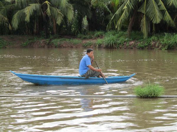 Làm giàu ở nông thôn: Đổi đời nhờ nuôi loài cá bông lau - Hình 1