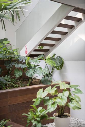 Nhà ống đơn giản tới...thường thường nhưng vẫn sở hữu khoảng vườn xanh đắt giá - Hình 9