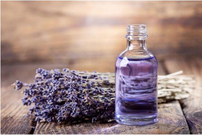 Đi Nhật Bản mùa hoa lavender nở: Những cánh đồng sắc màu - Hình 1