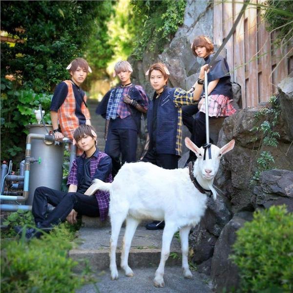 Chàng dê Shiropen nổi tiếng mạng xã hội vừa gia nhập nhóm nhạc idol Nhật Bản - Hình 1