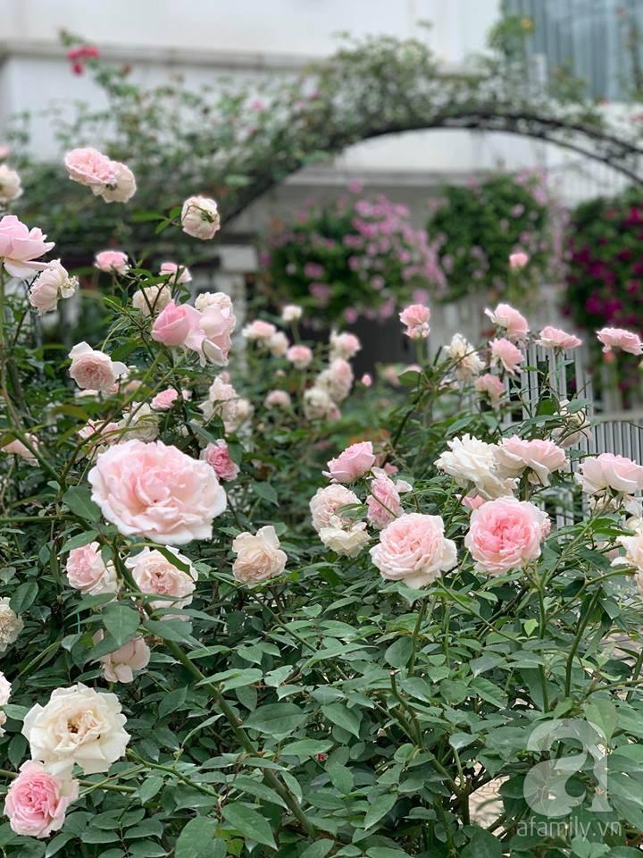 Cuộc sống bình yên của gia đình nhỏ trong ngôi nhà phủ kín hoa hồng ở Hà Nội - Hình 21