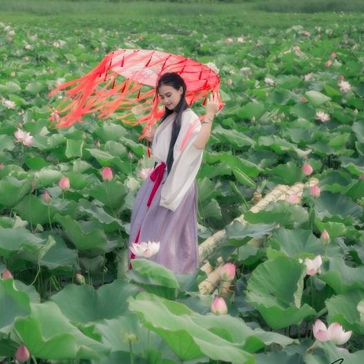 Nữ sinh chụp ảnh bên sen xinh đẹp như thần tiên tỷ tỷ gây sốt mạng - Hình 11