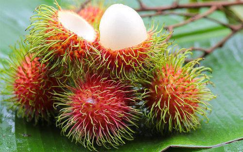 Lợi ích bất ngờ của loại quả mùa hè quen thuộc có đầy rẫy ở Việt Nam - Hình 5