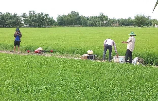 Nông dân hăm hở mua máy bay không người lái làm lúa - Hình 1