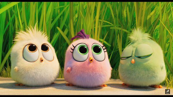 The Angry Birds Movie 2 tung trailer cuối hé lộ màn hợp tác giữa Chim giận dữ và Heo xanh - Hình 12