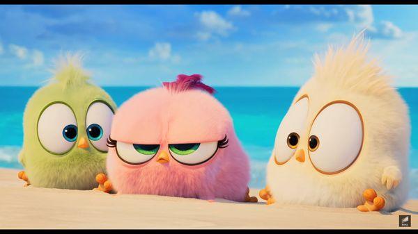 The Angry Birds Movie 2 tung trailer cuối hé lộ màn hợp tác giữa Chim giận dữ và Heo xanh - Hình 7