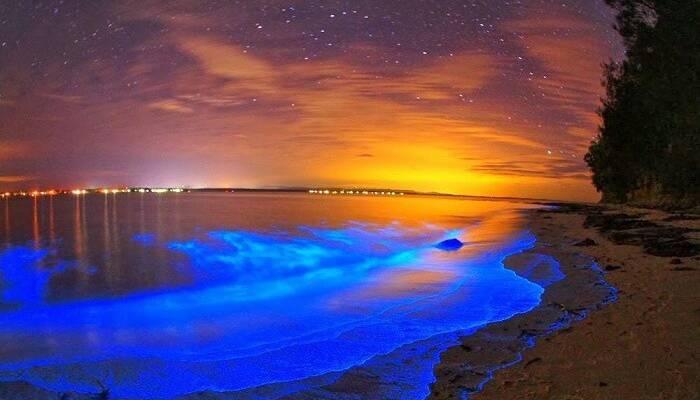 Những bãi biển tuyệt đẹp ở Maldives - Hình 9