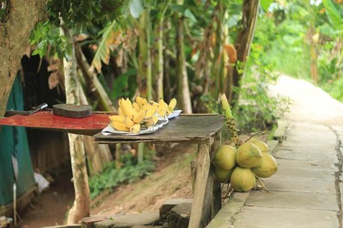 Thăm Cồn Sơn, ghé từng nhà thưởng thức món ngon - Hình 3