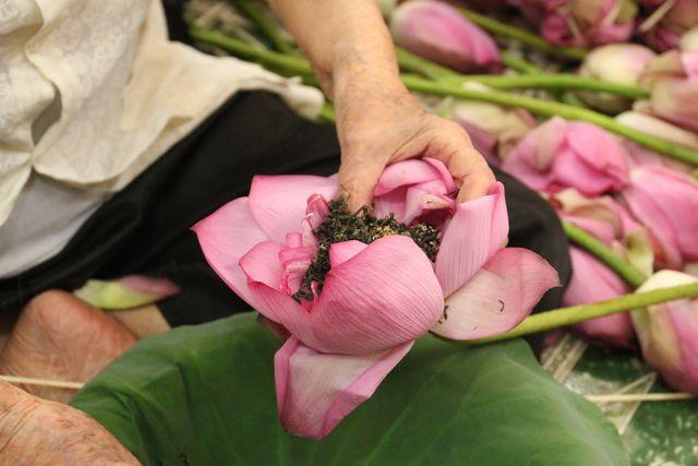 Thiên cổ đệ nhất trà sen của cụ bà U100 Hà Nội, giá 7 triệu đồng/kg - Hình 8