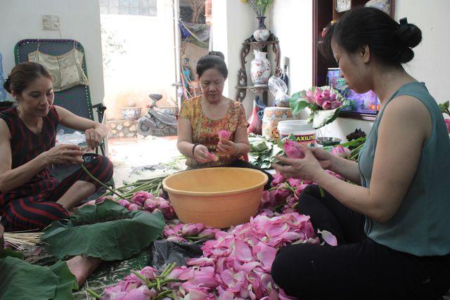 Thiên cổ đệ nhất trà sen của cụ bà U100 Hà Nội, giá 7 triệu đồng/kg - Hình 12