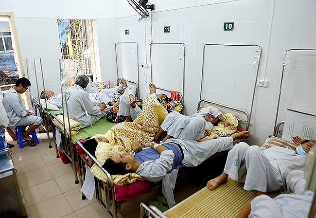 6 ca tử vong vì sốt xuất huyết, Bộ Y tế gửi công văn khẩn chống dịch - Hình 2