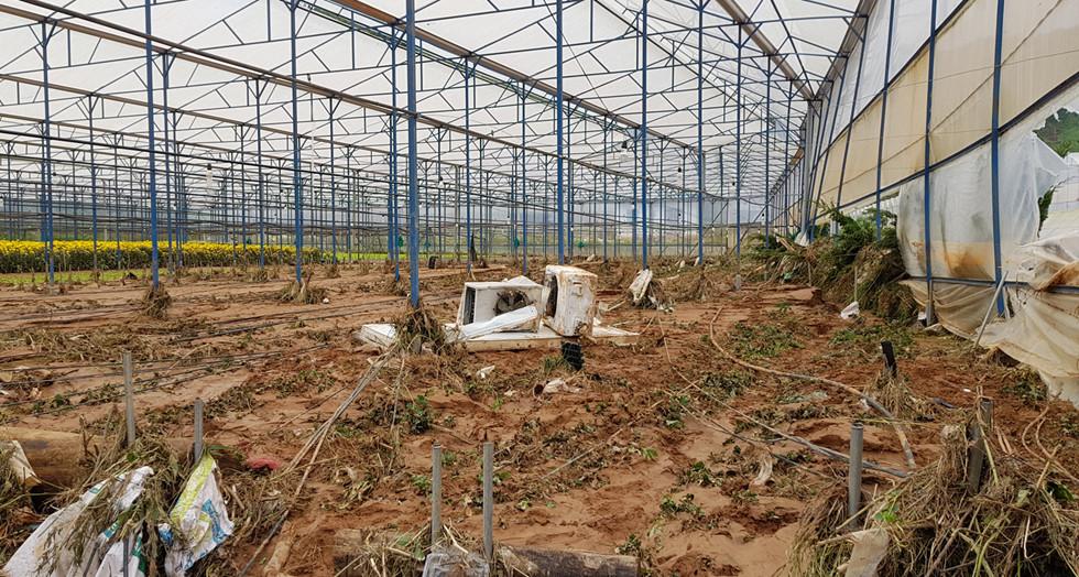 Tan hoang sau mưa lũ ở Lâm Đồng - Hình 8