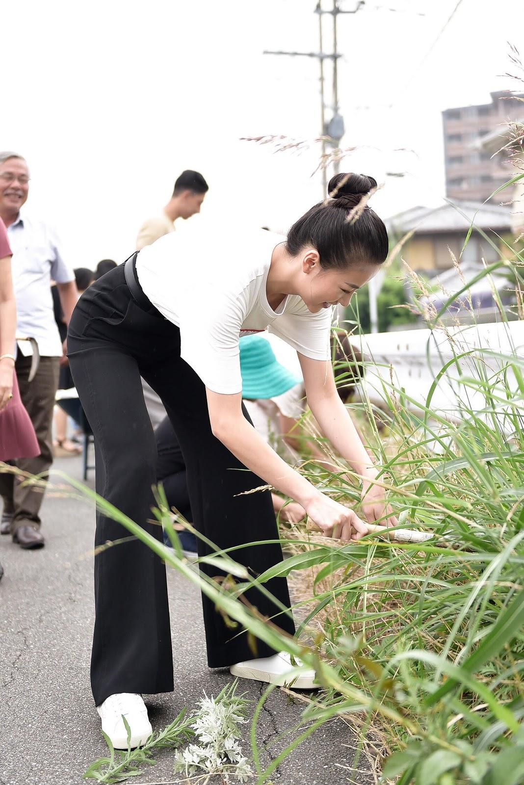 Hoa hậu Phương Khánh mặc giản dị đi nhổ cỏ, nhặt rác ở Nhật Bản - Hình 1