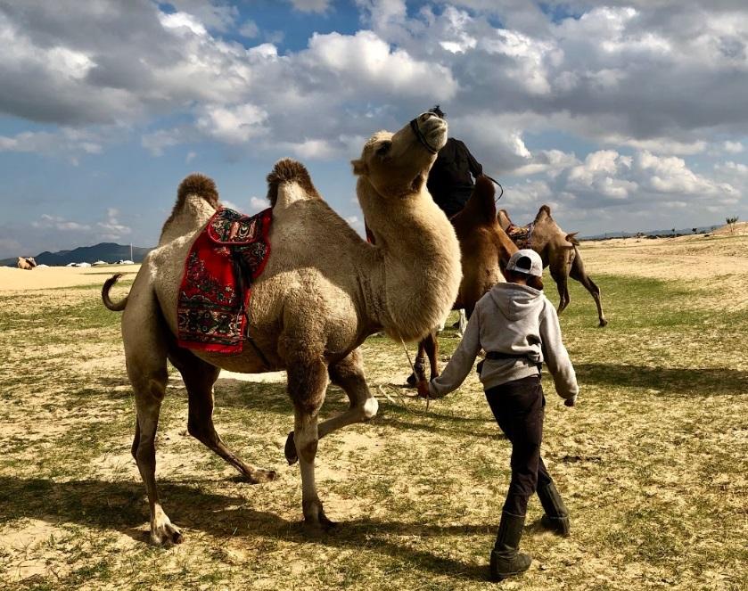 Hoa hậu một con - Ngọc Diễm học làm trà sữa, cưỡi lạc đà trên thảo nguyên Mông Cổ - Hình 3