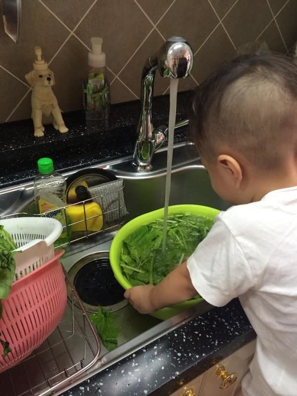 Thanh Thảo đăng ảnh con trai Ngô Kiến Huy gầy gò nhưng giỏi chăm em, hái rau và làm nhiều việc trong nhà - Hình 12