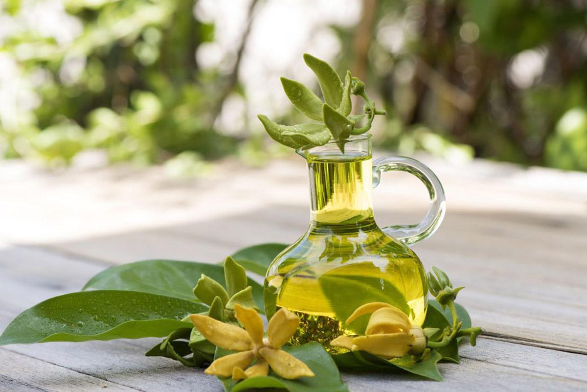 7 loại tinh dầu kích thích mọc tóc nhanh và hiệu quả - Hình 7