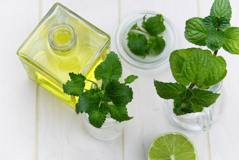 7 loại tinh dầu kích thích mọc tóc nhanh và hiệu quả - Hình 2