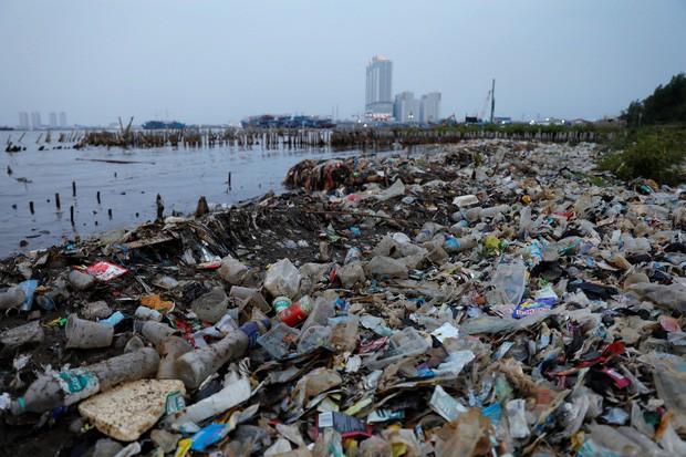 Hàng nghìn tỉ mảnh rác nhựa dưới đại dương có thể được giải quyết triệt để nhờ phát minh này - Hình 2