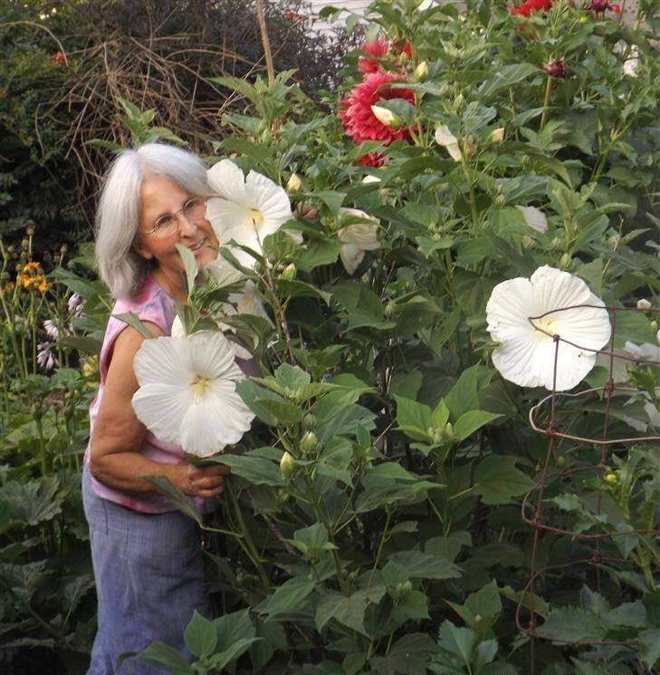 Khu vườn ngọt ngào đầy hoa lá và cây trái của ông bà cụ quyết rời căn hộ thành phố về quê sinh sống - Hình 21