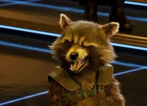 Rocket Raccoon: Từ kẻ trộm vặt nghiệp ngập trở thành một Avenger bảo vệ toàn vũ trụ - Hình 2